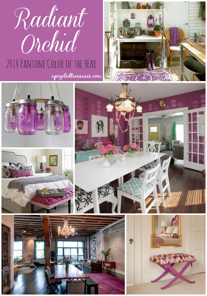 Inspire pantone 39 s color of the year radiant orchid for Orchid decor